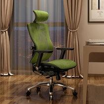 Sihoo西昊人体工学电脑椅家用 护腰工程学椅子 办公椅电竞椅座椅(绿色 黑框)