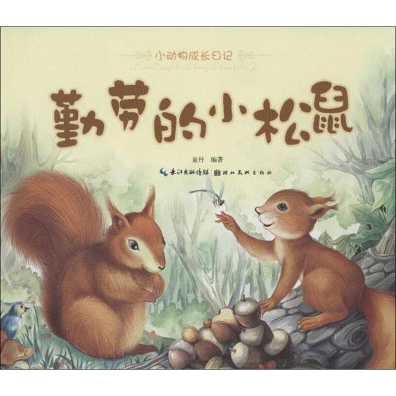 小动物成长日记.勤劳的小松鼠