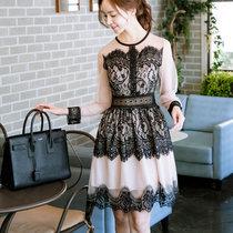 Mistletoe2017秋季新款韩版女装长袖蕾丝连衣裙圆领显瘦网纱裙(黑色 XL)