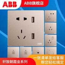 ABB开关插座面板套装轩致系列金色五孔插座86型二三极墙壁电源插座开关面板套餐合集(五孔(带USB充电))