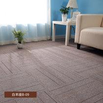 办公室地毯拼接方块客厅卧?#34915;?#38138;写字楼会议室台球室商用工程满铺地毯(白羊座B-09)