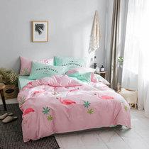 黛丝丹奴 北欧四件套小清新四件套1.5m/1.8米床上用品双人床单被套套件(爱情鸟 适合2*2.3米被芯)