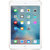 Apple iPad mini 4 平板电脑(16G金色 WiFi版)MK6L2CH/A